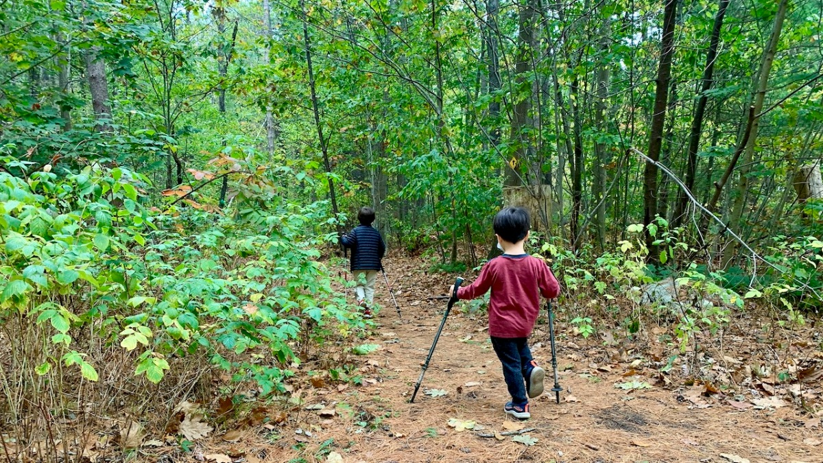 Kids with trekking poles hiking Falmouth Maine trail